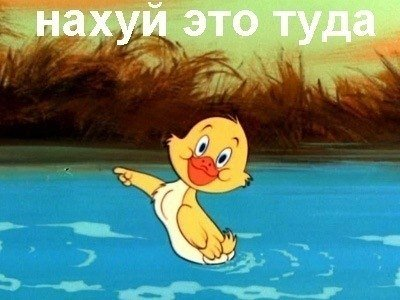 http://s.pikabu.ru/images/big_size_comm/2012-07_3/13421173649235.jpg