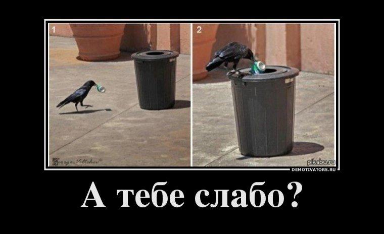 http://s.pikabu.ru/images/big_size_comm/2012-08_1/13441731632014.jpg