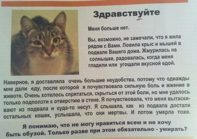 http://s.pikabu.ru/images/big_size_comm/2012-10_6/13512135293745.jpg