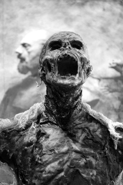Список игр про зомби: лучшие представители жанра