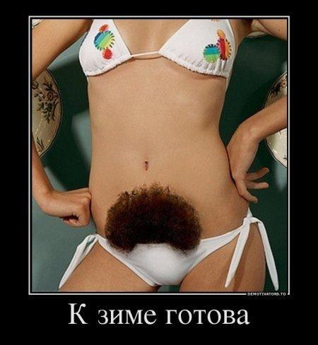 фотографии волосатых: