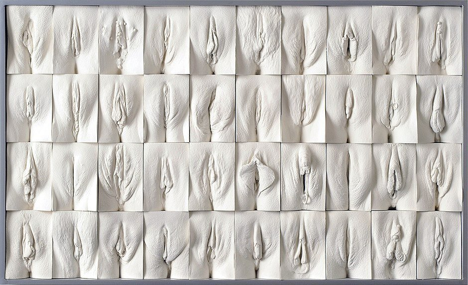 Фотоподборка #69 :: The Great Wall of Vagina Exhibition (Jamie McCartney) -