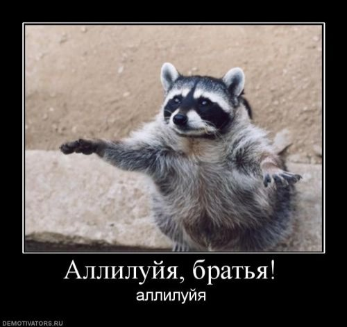 http://s.pikabu.ru/images/big_size_comm/2013-07_3/13735667175960.jpg