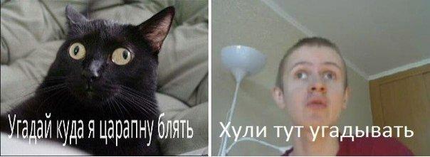 13771145897139.jpg