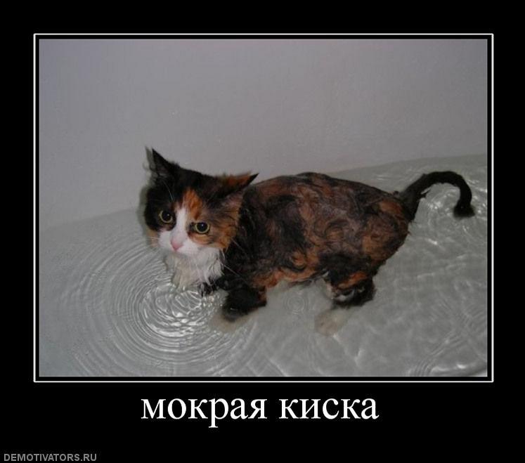 Переолярная подтяжка груди в иркутске