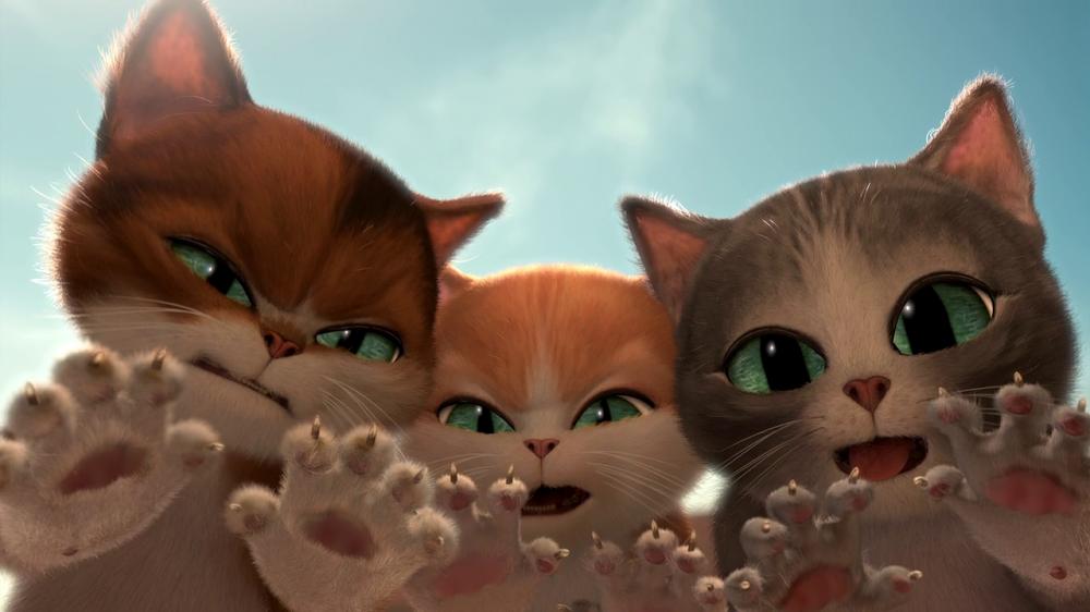 Котенок в сапогах 6