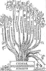 Поэтому все т.н. индоевропейские языки располагаются на одном корне.  Древо языков.