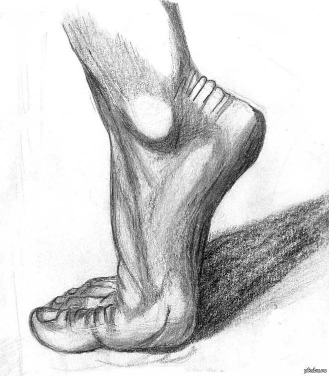 Рисунок стопы в карандаше