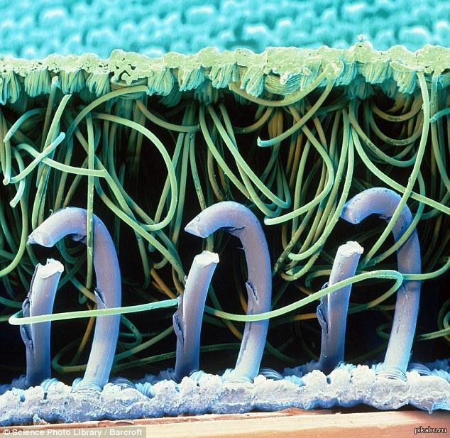 Транс купается в сперме 5 фотография