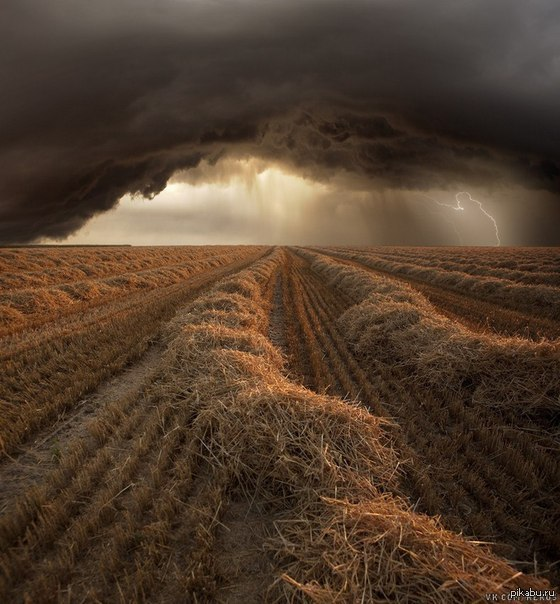 В Врогоградской области уточняют ущерб от ливней