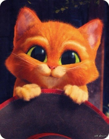 картинки кот в сапогах:
