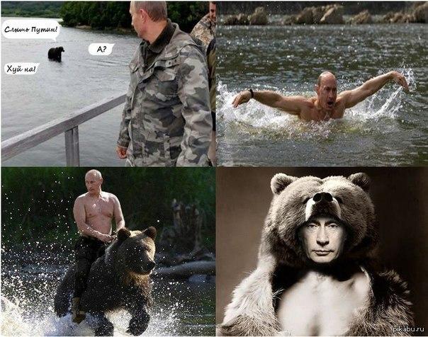 фотообои путин: