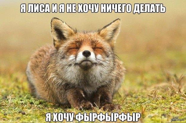 http://s.pikabu.ru/post_img/2013/02/10/10/1360514373_338471806.jpg