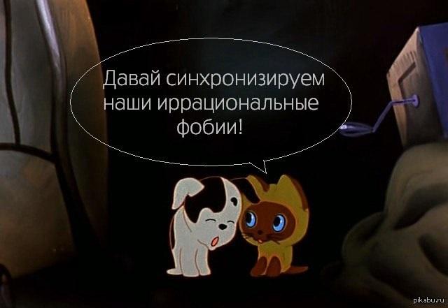 1362173101_1955895632.jpg