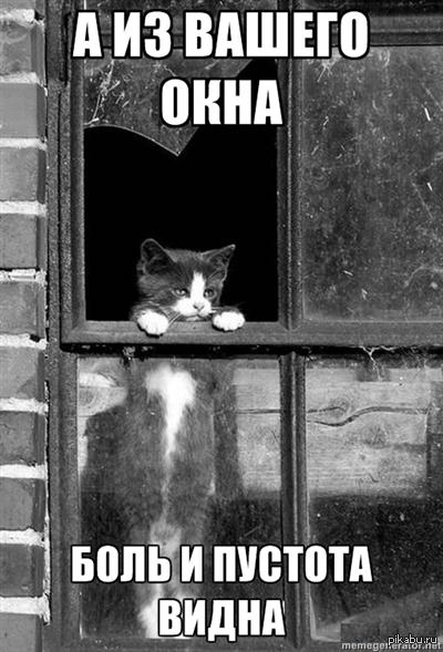 безудержное картинки кот веселье
