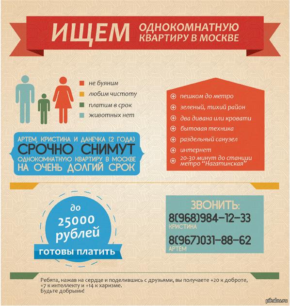 инфографика квартира