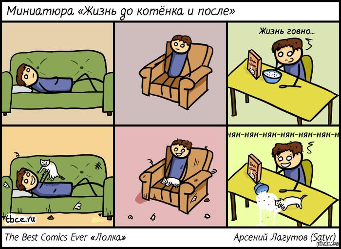 Правда жизни коты