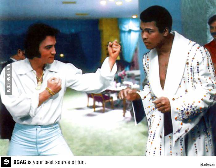 elvis a cultural obsession essay