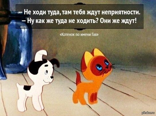 http://s.pikabu.ru/post_img/2013/03/29/6/1364540946_433804240.jpg