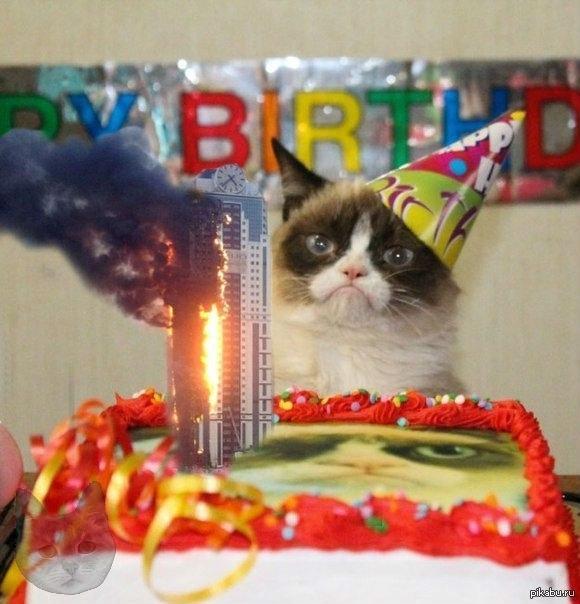 картинки с днем рождения с котами прикольные