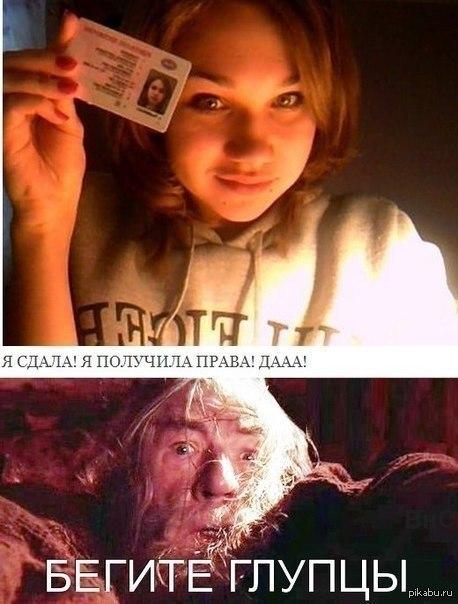 права прикол: