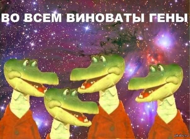 http://s.pikabu.ru/post_img/2013/04/14/12/1365966195_1221455663.jpg