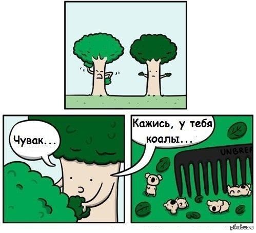 http://s.pikabu.ru/post_img/2013/04/17/9/1366204065_1778702216.jpg