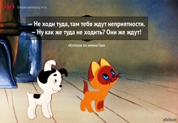 http://s.pikabu.ru/post_img/2013/04/25/11/1366911258_292459941.jpg