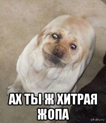 smotret-onlayn-porno-s-sati-kazanovoy