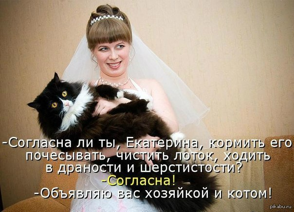 http://s.pikabu.ru/post_img/2013/06/01/11/1370110585_1649973158.jpg