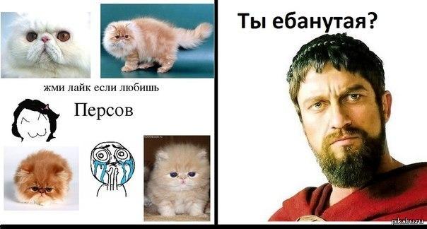 Леонид не одобряет