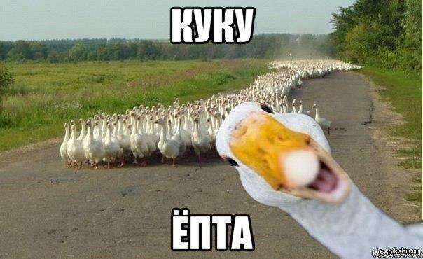 pizda-na-bmv