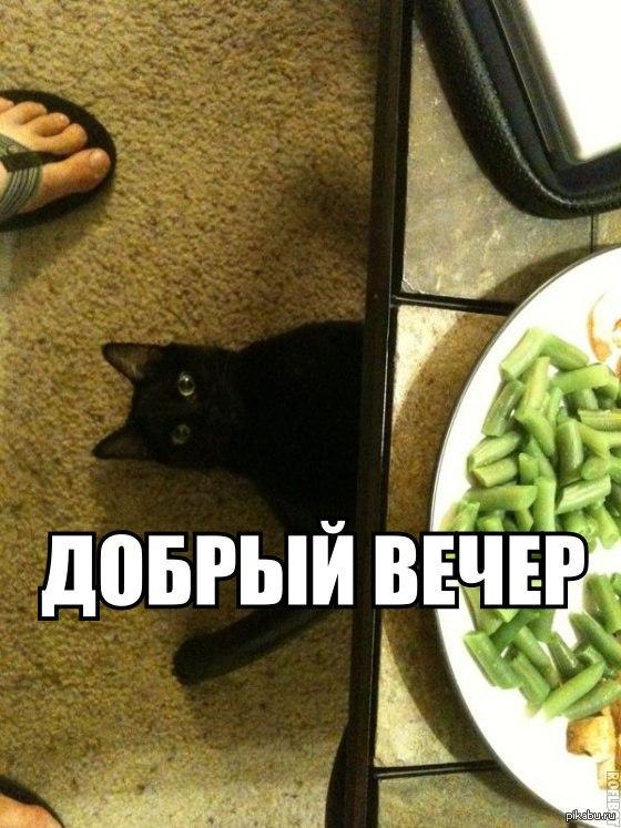 http://s.pikabu.ru/post_img/2013/06/19/12/1371668497_1833324308.jpg