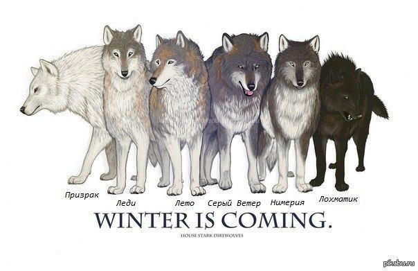 Amazoncom Dark Horse Deluxe Game of Thrones Stark