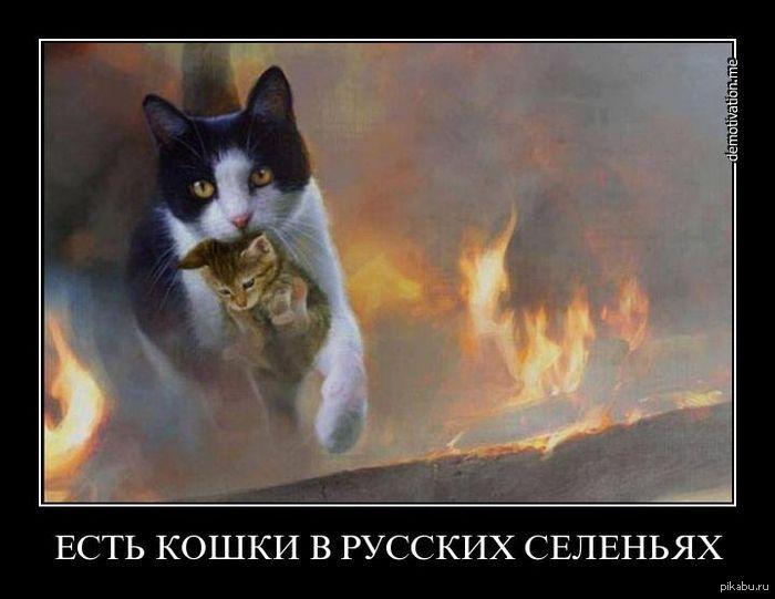 Трахание с мамочкой русское 1 фотография
