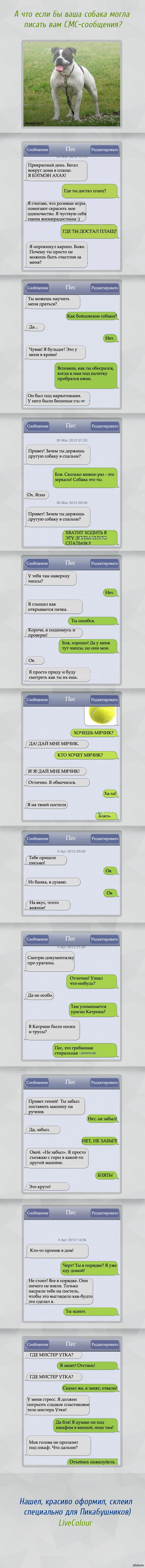 http://s.pikabu.ru/post_img/2013/07/04/7/1372931879_1859898033.jpg