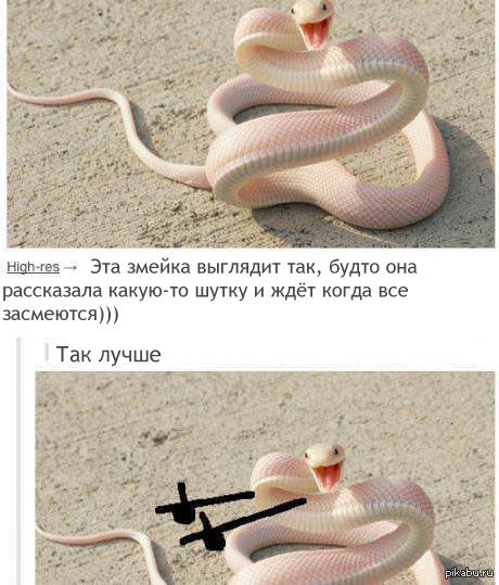 http://s.pikabu.ru/post_img/2013/07/18/11/1374167649_1571653663.jpg