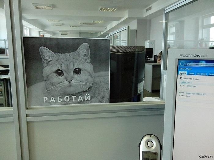 Мотивация в офисе!