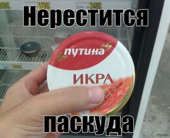 1374642076_247495533.jpg
