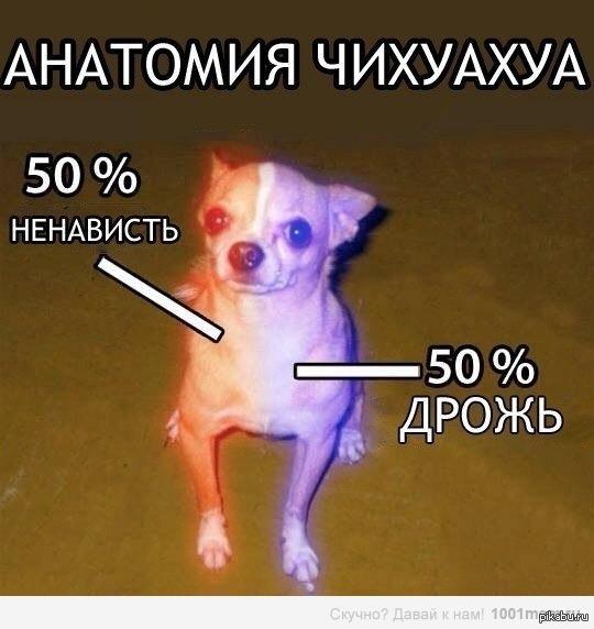 1374831853_1874028538.jpg