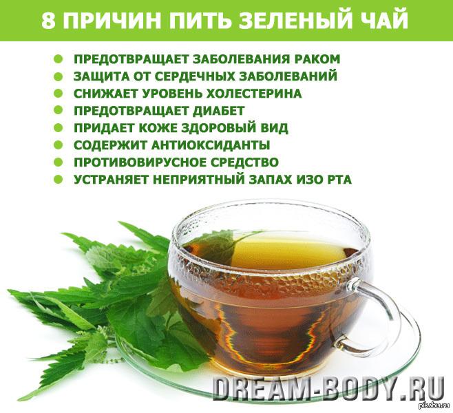 Пить зеленый чай или воду