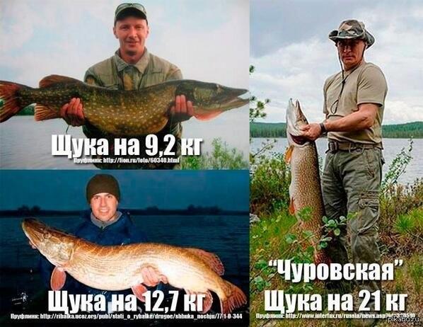 указ путина о рыбалке