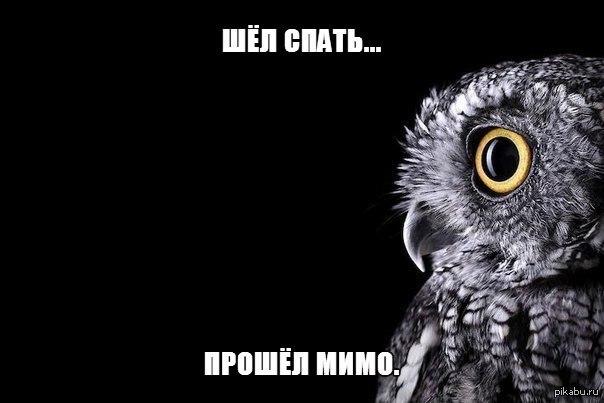 http://s.pikabu.ru/post_img/2013/08/11/6/1376206949_1643650817.jpg