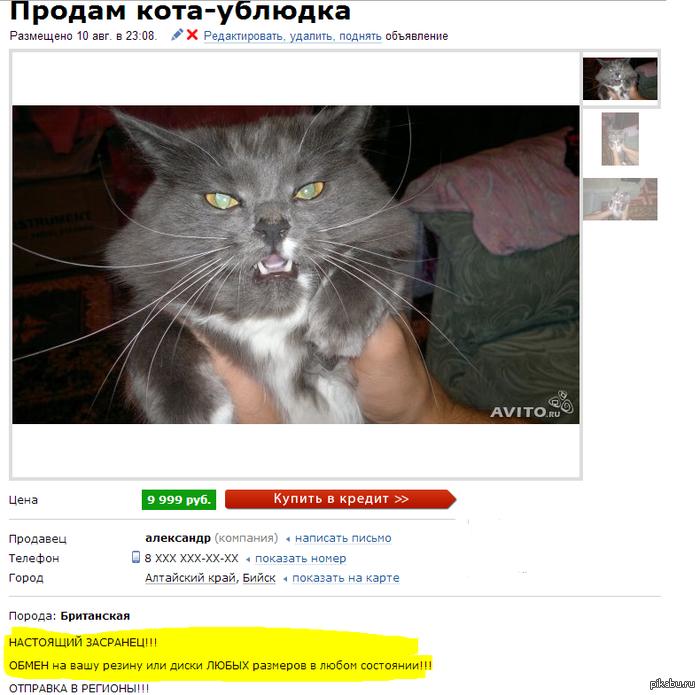 http://s.pikabu.ru/post_img/2013/08/12/8/1376307952_1667266715.PNG