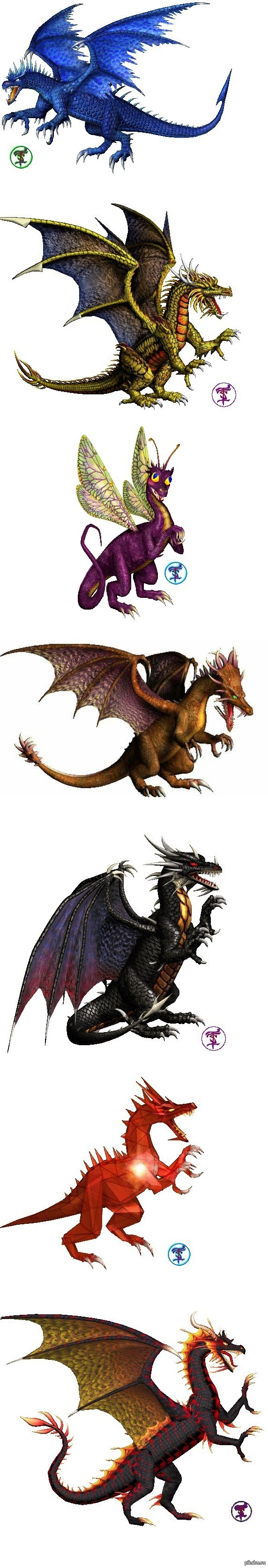 Три дракони фото 19 фотография