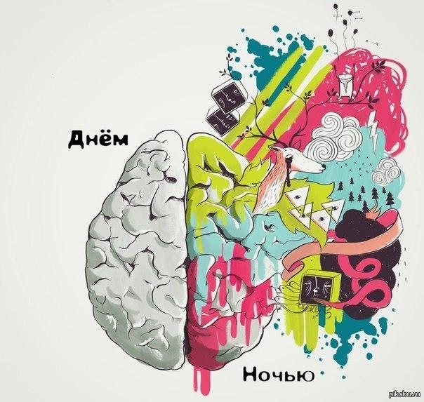 картинка мозги в коробке