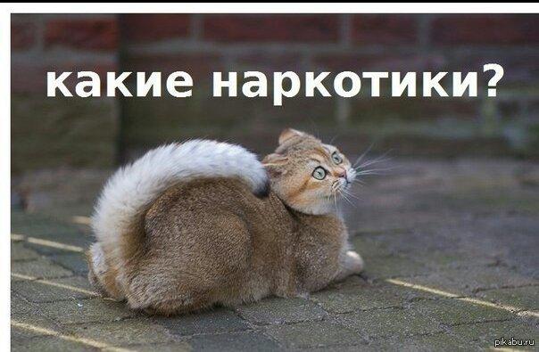 В Луганске недалеко от места проведения учений боевиков прогремел мощный взрыв, - ИС - Цензор.НЕТ 599