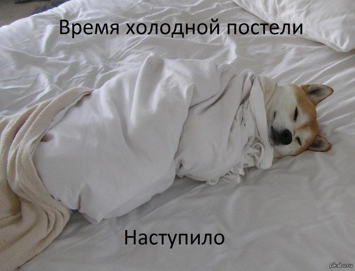 http://s.pikabu.ru/post_img/2013/09/25/4/1380079959_2139780512.jpg