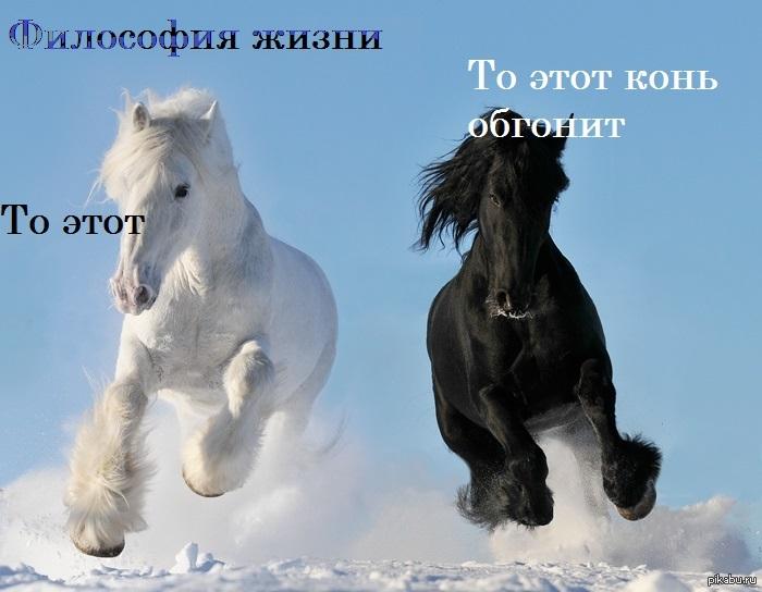 Черное и белое 3 фотография