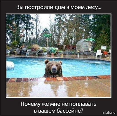 http://s.pikabu.ru/post_img/2013/09/28/8/1380366178_74675913.jpg